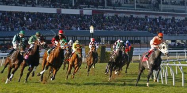 saratoga del mar betting online