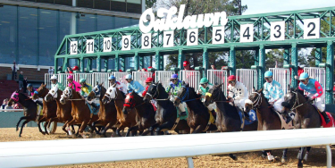 Woodbine racing betting