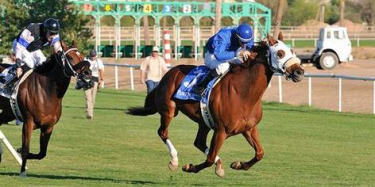 bet on Woodbine online