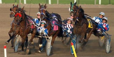 horse racing betting online Woodbine